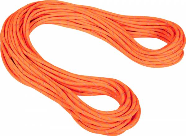 Mammut Alpine Dry 9,5 mm Rope Kletterseil safety orange-zen