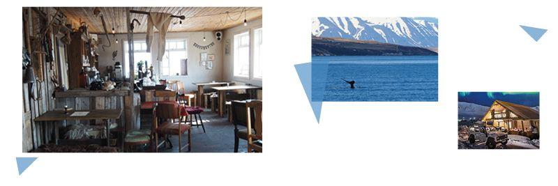 Skitourenwoche-auf-Island-Sonstiges