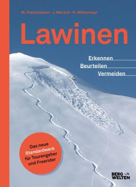 Bergwelten Lawinen Buch