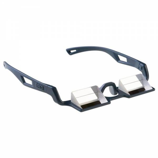 LACD Belay Glasses VS Sicherungsbrille dark rock